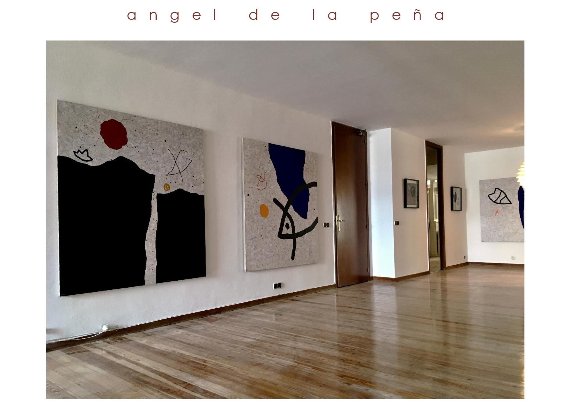 Exposición Ángel de la Peña